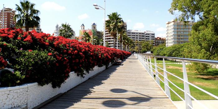 Pont Est Turia Valencia