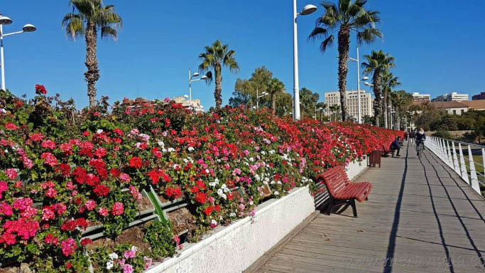 Puente de las flores, jardin du turia à Valencia