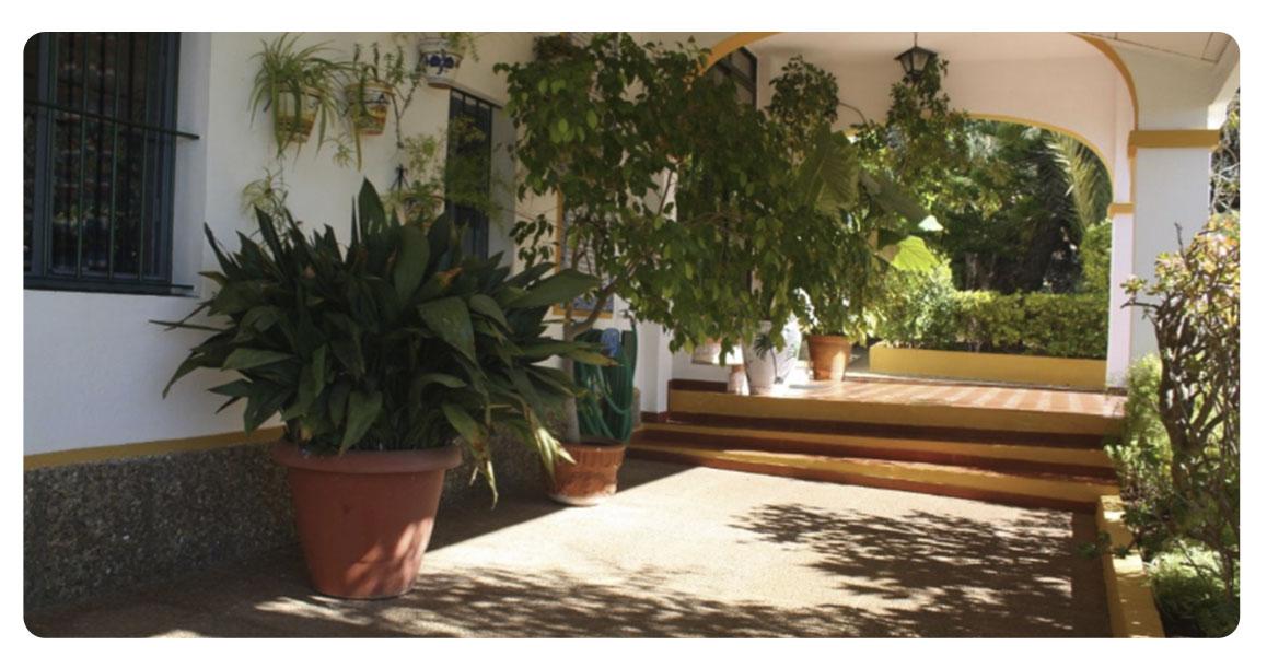 acheter maison grande seville jardin
