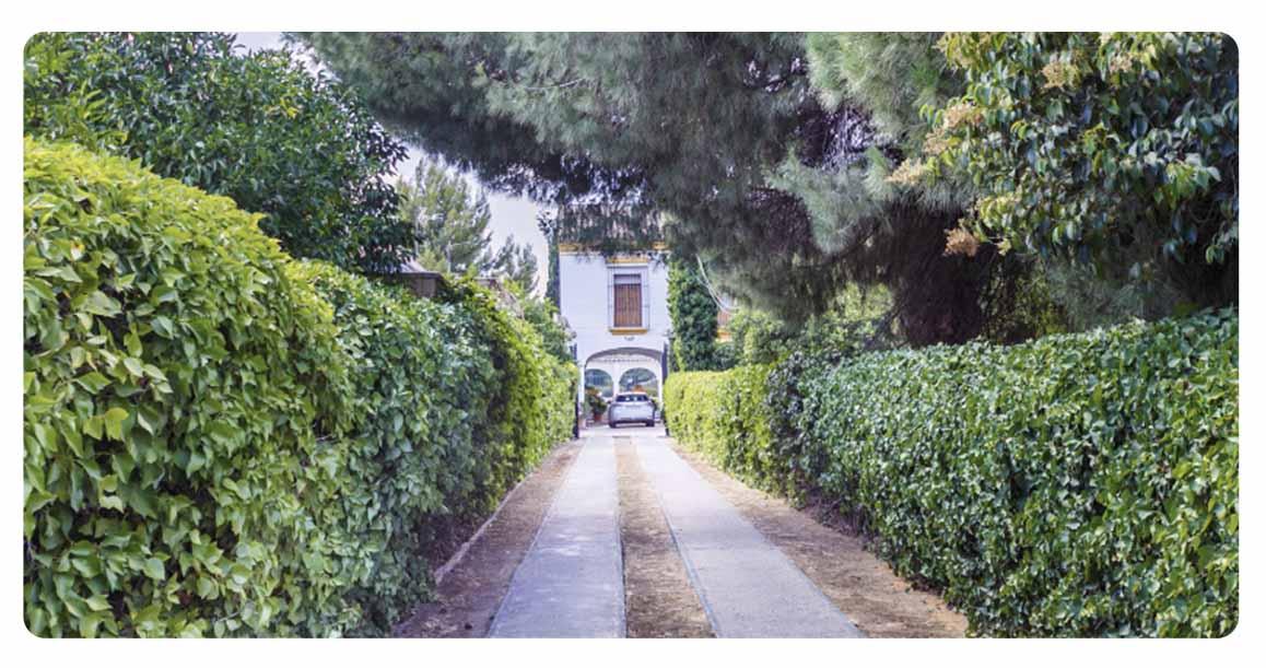 acheter maison typique andalouse seville route