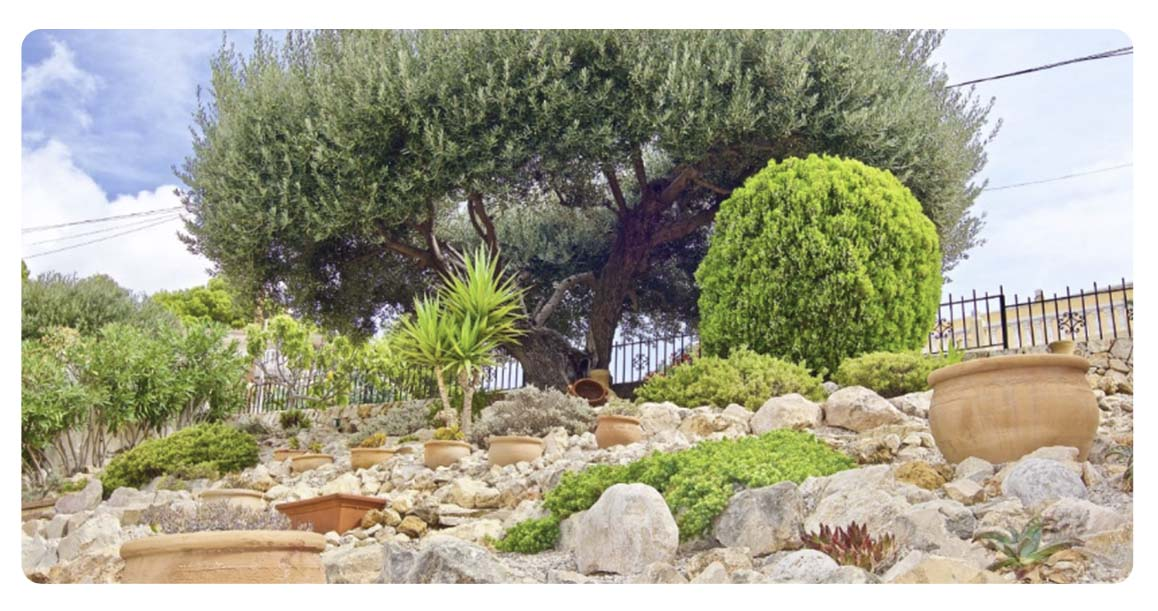 acheter maison villa castellon alcossebre jardin